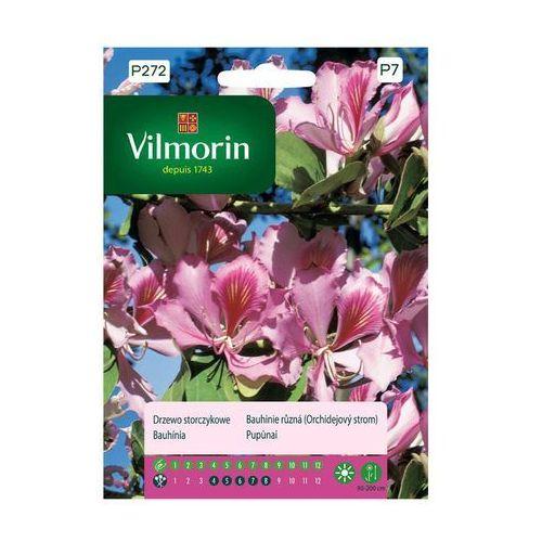 Vilmorin Drzewo storczykowe nasiona tradycyjne 10 szt. (5907617322240)