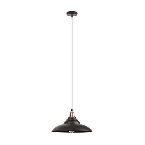 Lampa wisząca zwis oprawa Rabalux Doug 1X60W E27 czarna 2910, kolor Czarny