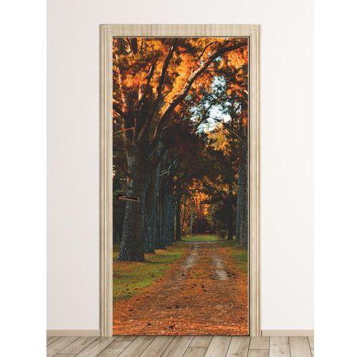 Fototapeta na drzwi parkowa aleja fp 5737 marki Wally - piękno dekoracji
