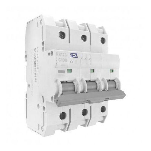 C100A 3P 10kA Wyłącznik nadprądowy bezpiecznik Typ S eska PR123 SEZ 6564 (8585009006564)