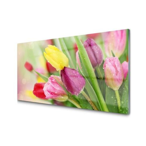 Obraz na Szkle Tulipany Kwiaty Roślina