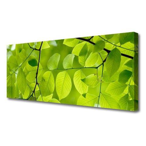 Obraz na płótnie liście natura roślina marki Tulup.pl