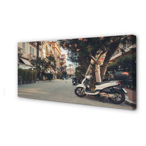 Obrazy na płótnie Motocykle palmy miasto lato