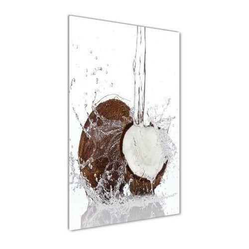 Nowoczesny foto-obraz akryl na ścianę Kokos