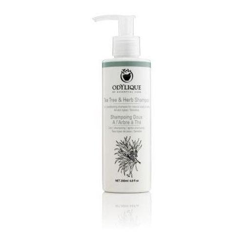 Odylique szampon z drzewa herbacianego i ziół 200ml marki Essential care