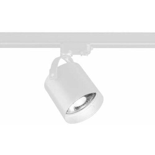 Reflektorowa lampa sufitowa tenri 7704 metalowa oprawa tuba do 3-fazowego systemu szynowego biała marki Shilo