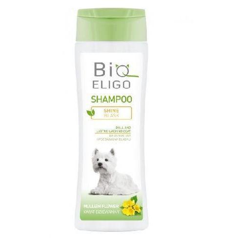 DERMAPHARM BioEligo Blask szampon do psów o matowej i pozbawionej blasku sierści 250ml