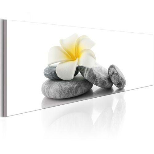 Artgeist Obraz - biały lotos