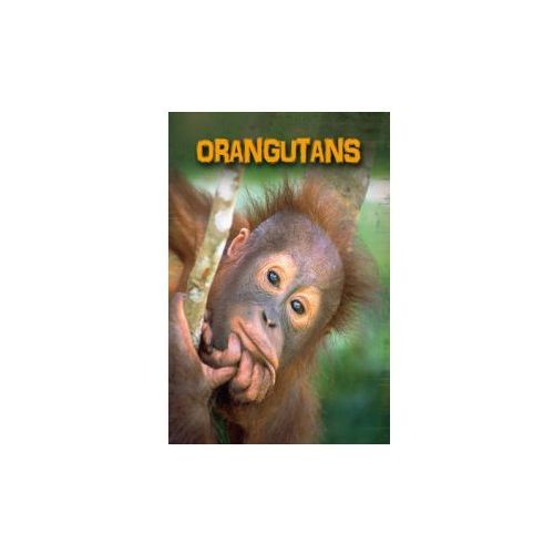 Living in the Wild: Primates: Orangutans (9781406233063)