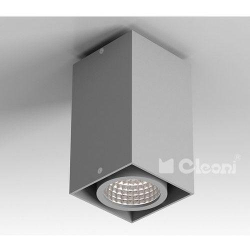 Lampa sufitowa tuz e1sh, t019e1sh+ marki Cleoni