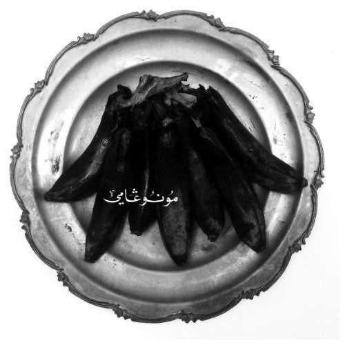Land Of Kush & Egyptian Light Orchestra - Monogamy, 00048120