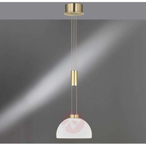 Fischer & honsel Szklany klosz, lampa wisząca shine led, 1-punktowa (4003694601924)