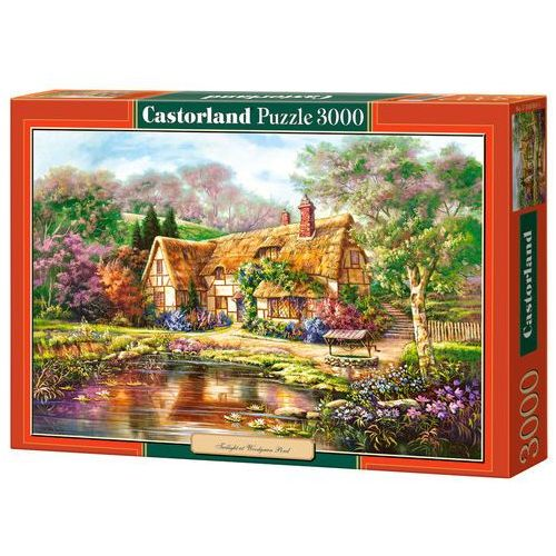 Castorland, Copy of Twilight, puzzle, 3000 elementów