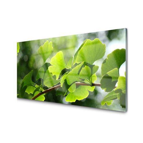Panel Szklany Gałęzie Liście Natura Drzewo