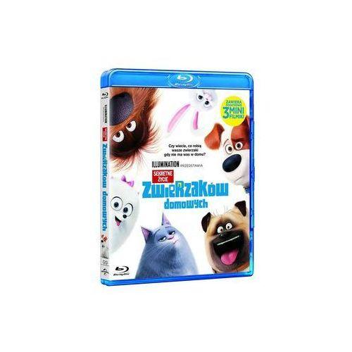 Oxfrod Sekretne życie zwierzaków domowych 3d steelbook