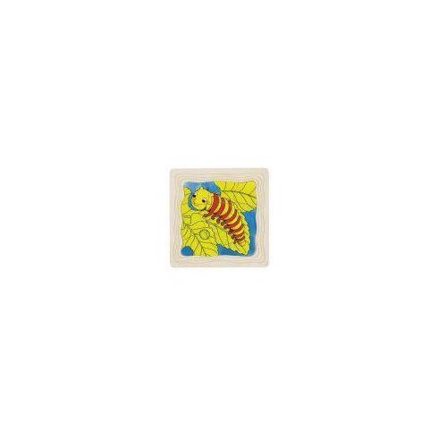 Puzzle warstwowe, etapy rozwoju motyla, 4 obrazki, 44 el.