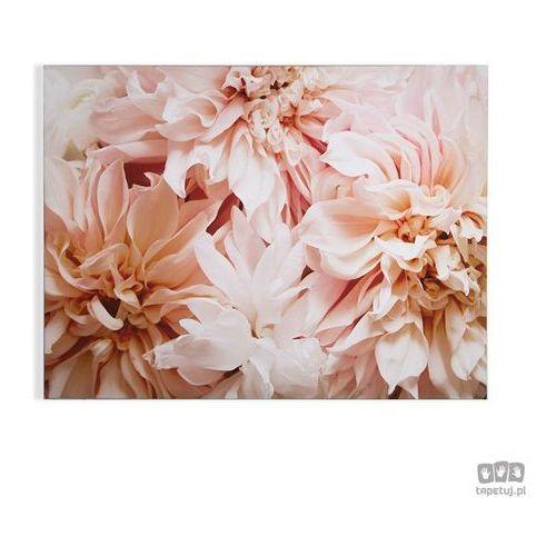 Obraz kwiaty 104575 marki Graham&brown