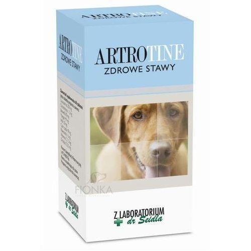 DERMAPHARM ArtroTine Zdrowe Stawy preparat witaminowy dla psów
