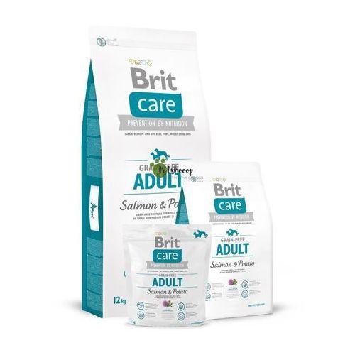 Brit care gf adult salmon & potato 1kg