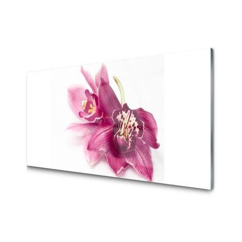 Obraz Akrylowy Kwiaty Roślina Natura Wintersales