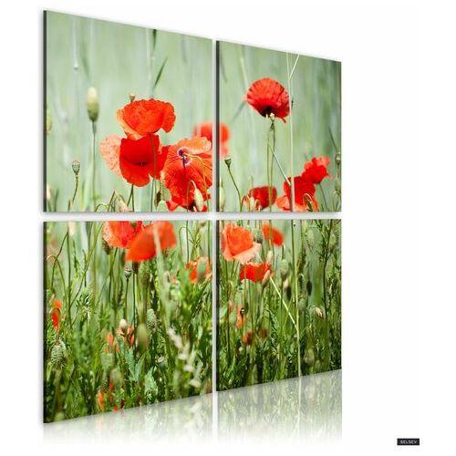 SELSEY Obraz - Wiosenna pora 40x40 cm