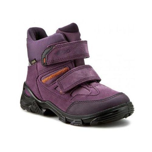 Ecco Snowboarder (72124259663)