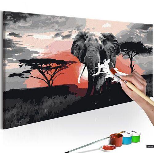 Selsey obraz do samodzielnego malowania słoń (afryka)