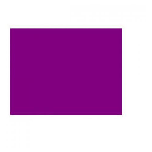 filtr par-56 folia 148 purpurowy marki An