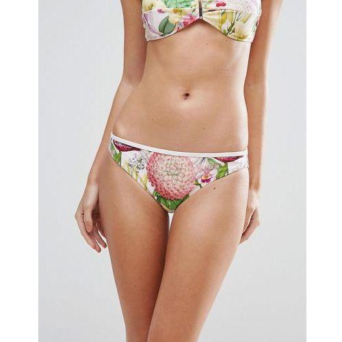 encyclopedia floral bikini bottoms - multi od producenta Ted baker