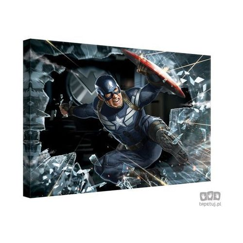 Obraz MARVEL Capitan America: The Winter Soldier PPD336, PPD336