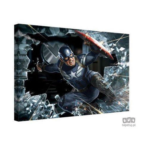 Obraz MARVEL Capitan America: The Winter Soldier PPD336