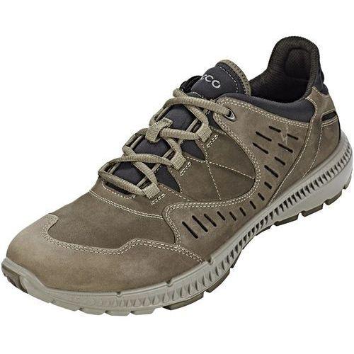 terrawalk buty mężczyźni szary 41 2018 buty codzienne, Ecco