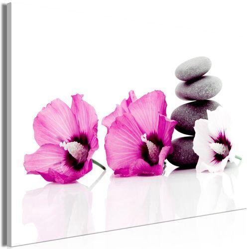 Obraz - spokojne malwy (1-częściowy) szeroki różowy marki Artgeist