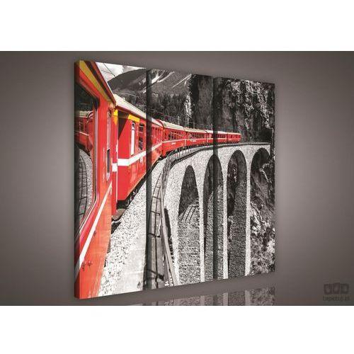 Obraz czerwony pociąg na czarno-białym tle ps618s6 marki Consalnet