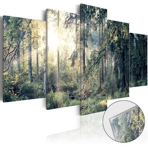 Obraz na szkle akrylowym - baśniowy krajobraz [glass] marki Artgeist