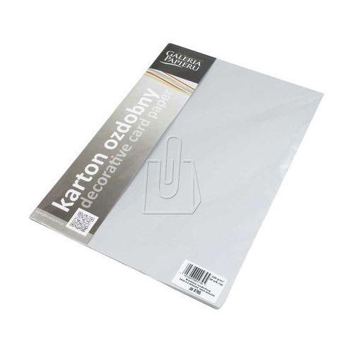 Papier ozdobny (wizytówkowy) Galeria Papieru millenium srebrny A4 220g (5903069009395)