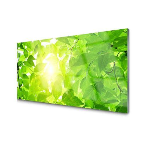 Tulup.pl Obraz akrylowy liście natura słońce roślina