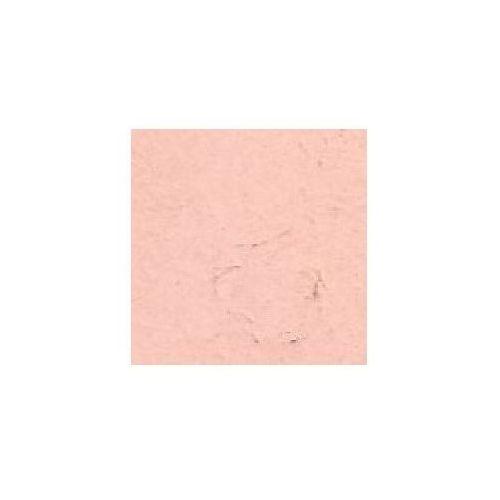Pigment kremer - ziemia okrzemkowa 599930 marki Retro image