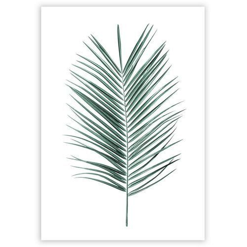 plakat palm leaf emerald green, 40 x 50 cm marki Dekoria