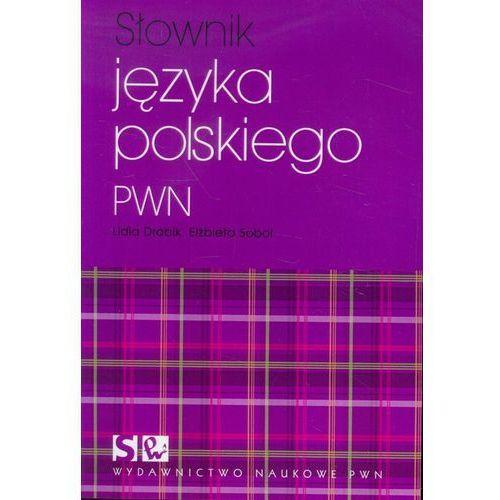 Słownik języka polskiego PWN (2013)