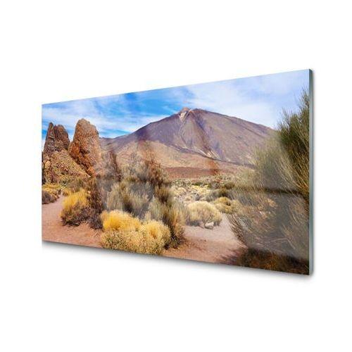 Obraz Akrylowy Góry Rośliny Skały Krajobraz