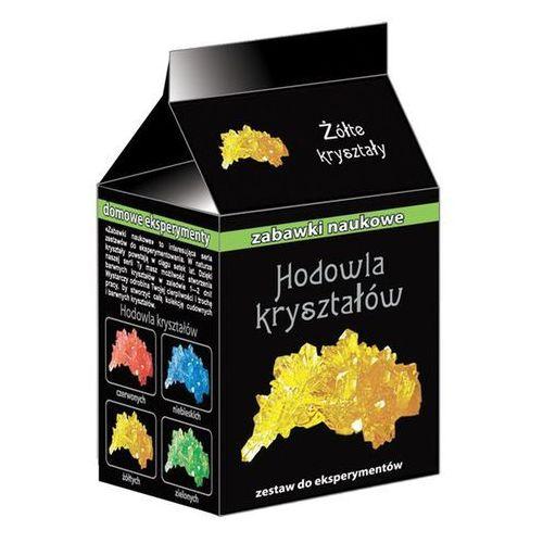 Zabawki naukowe Żółte kryształy - Ranok-Creative (4823076100933)