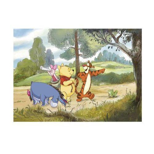 Kubuś Puchatek i Przyjaciele Disney - fototapeta, F 4-411