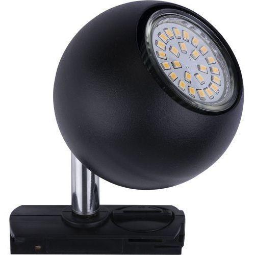 Halogen TK Lighting Tracer 1x40W GU10 czarny 4041 (5901780540418)