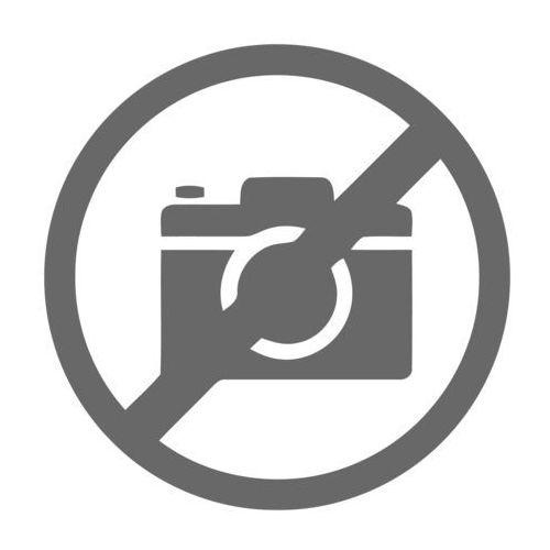 ASA 5512-X -- 5555-X Hard Drive Blank Slot Cover (Spare) (ASA-HD-BLANK=)