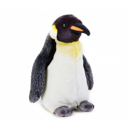 Pingwin, GXP-647572