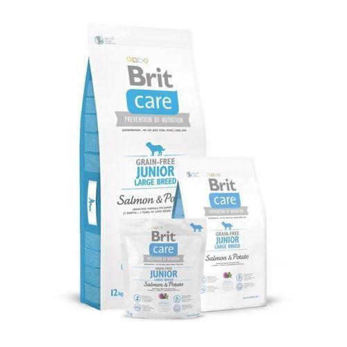 Brit  care gf junior large salmon & potato 3kg