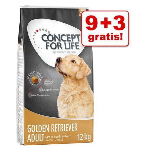 Concept for life 9 + 3 kg gratis! , 12 kg - golden retriever adult, 12 kg