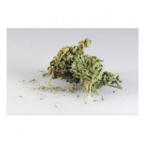 OKAZJA - Sinsemilla CBD 10g - marihuana
