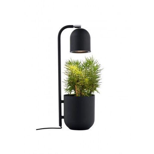 Botanica 40842102 lampa stołowa dekoracyjna doniczka marki Kaspa